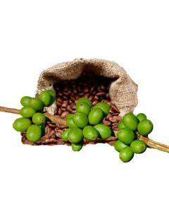 BC El Molino ubrent Grønn Kaffe Hele Bønner Single Estate. Rainforest Alliance sert